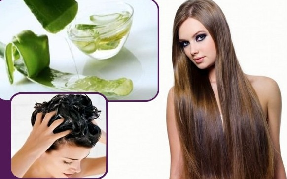 Aloe Vera To Stop Hair Fall