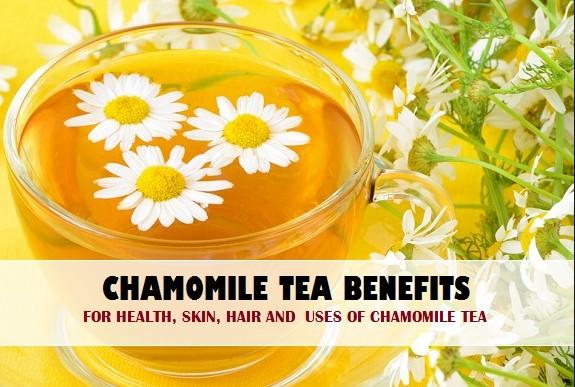 Chamomile Tea Benefits & Uses On Skin, Hair And Health