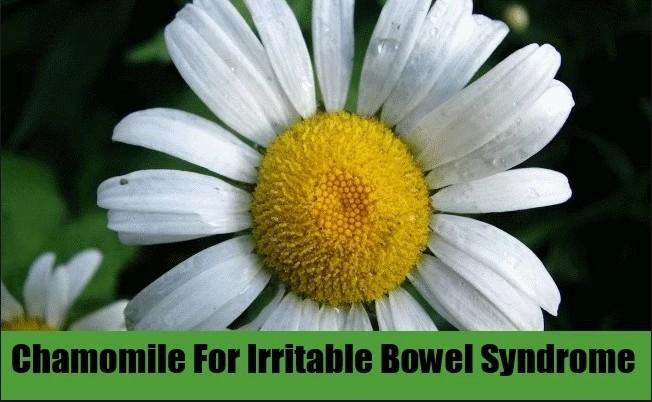 Chamomile Tea Soothe Bowel Syndrome